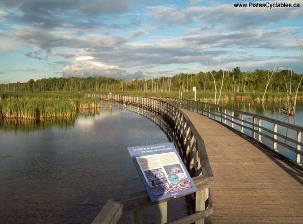 La piste cyclable du Parc-Nature du Bois-de-l'île-Bizard -- Il fait beau, sors ton vélo sur les pistes cyclables de l'île de Montréal! | NIGHTLIFE.CA