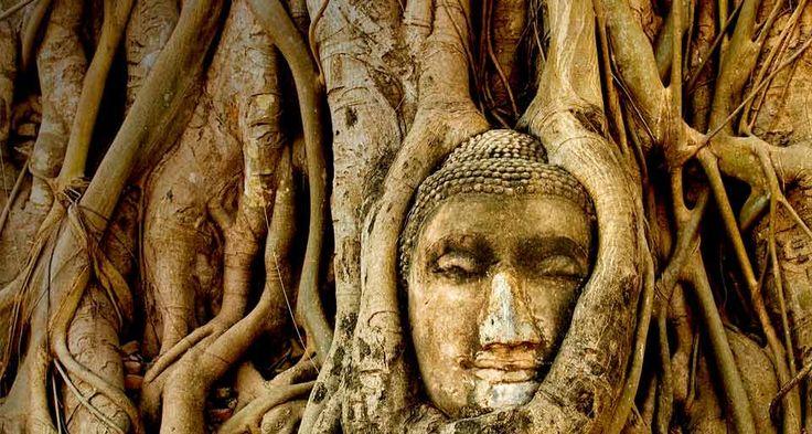 WatMahatat_Ayutthaya Thailand