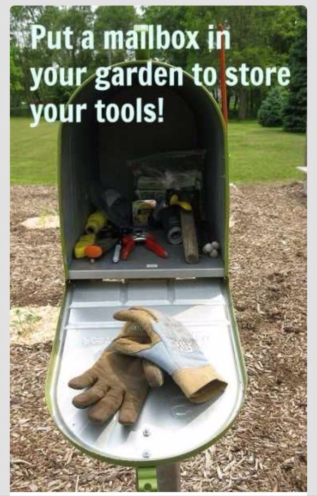 Need an outside tool organizer! - mail box