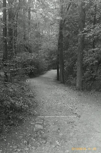 The path to everything: Spaces, Favorite Places, Paths, Lead