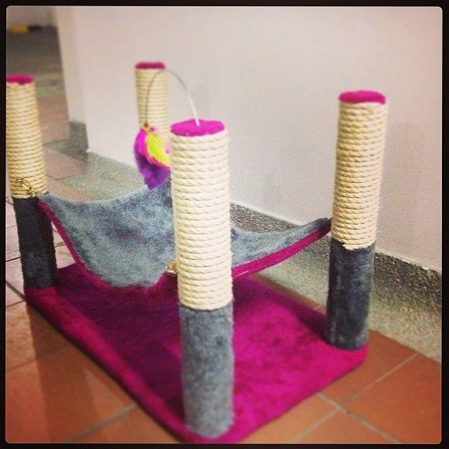 Diseñamos gimnasios personalizados para gatos, gimnasios móviles, juguetes y mucho más!. Medellín / Colombia Whatsapp 3136860674 ó 3007837733.