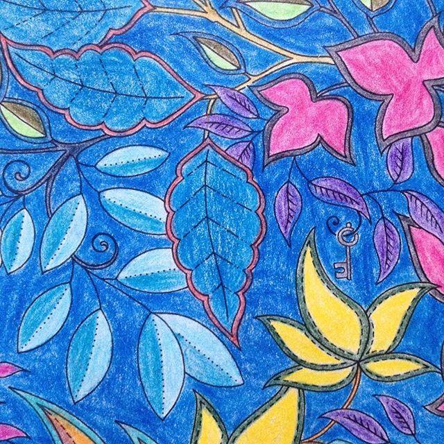 #secretgarden#secretgardencoloringbook#johannabasford#malbuchfürerwachsene#buntstifte#anmalen#colors#coloring#pattern#patterns#meditation#achtsamkeit…