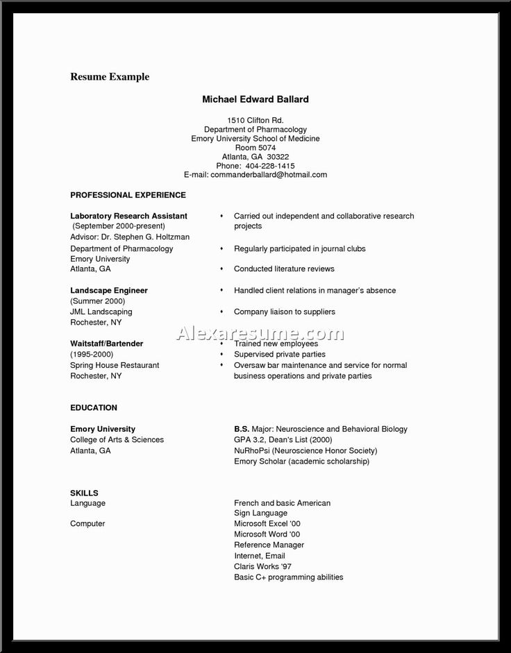 good sample resume format objectives examples great
