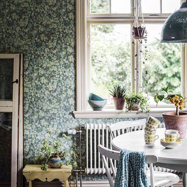 """162 tykkäystä, 7 kommenttia - Duro (@durosweden) Instagramissa: """"""""Om våra väggar kunde tala. Vad skulle de säga då? Kanske att de önskar sig ett grönskande lövverk…"""""""