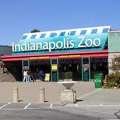 Founded in , the Indianapolis Zoo is home to different species of animals. Indianapolis Zoo is located at Washington St. in Indianapolis, IN. Visit the website for more information on special events, conservation programs, memberships and special zoo experiences.