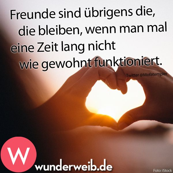 17 best ideas about emotionale sprüche on pinterest