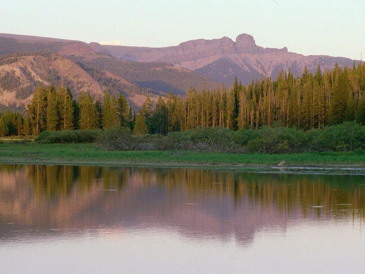 Absarokameus Yellowstone Lake Wyoming