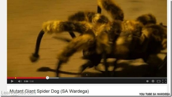 Un perro araña, el primer beso y Nike, entre lo más visto en YouTube 2014 (Videos) - http://www.leanoticias.com/2014/12/11/un-perro-arana-el-primer-beso-y-nike-entre-lo-mas-visto-en-youtube-2014-videos/
