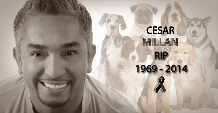 "The famous ""Dog whisperer"" Cesar Millan died of a heart attack this morning..  Dec  7"