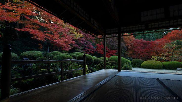 Shisen-do Jozanji Temple / 詩仙堂