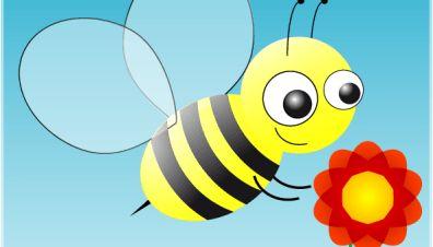 Bienensterben - Ursachen bestätigt