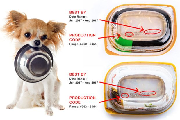 Canadian Recall Foods For Dogs