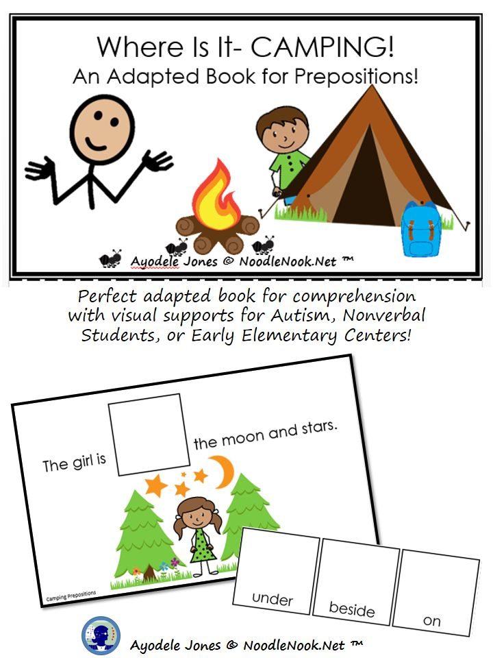 Camping Adapted Book for Prepositions for Autism and LIFE Skills