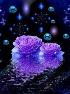 Purple Rose-2-