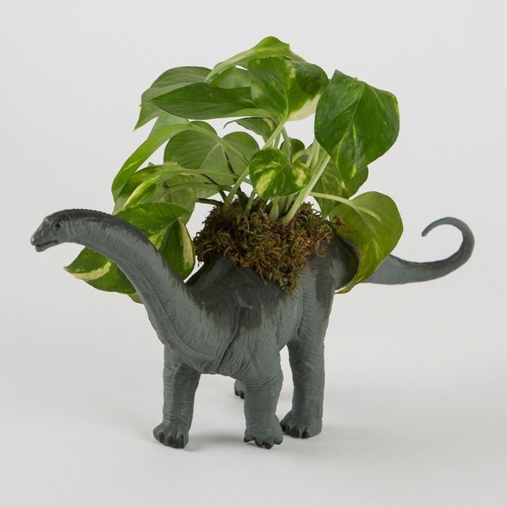 The coolest planter around. Available now in the Brit + Co Shop.