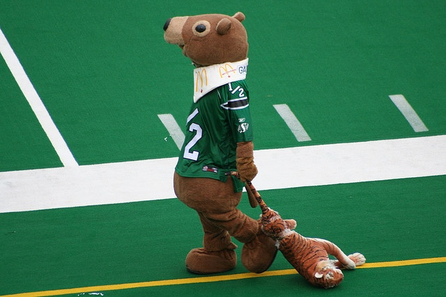 Von's Fotos: Saskatchewan Roughriders by vonarica, via Flickr -  Love it when Hamilton plays Saskatchewan in Saskatchewan!!!