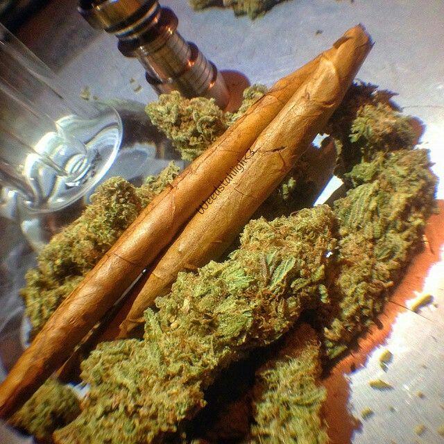 Crazy weed blunts