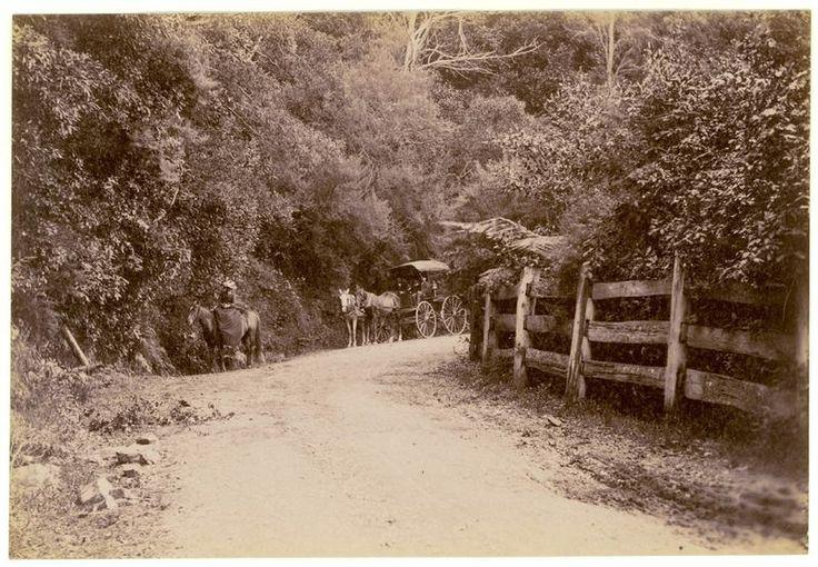 Bulli Pass, Wollongong