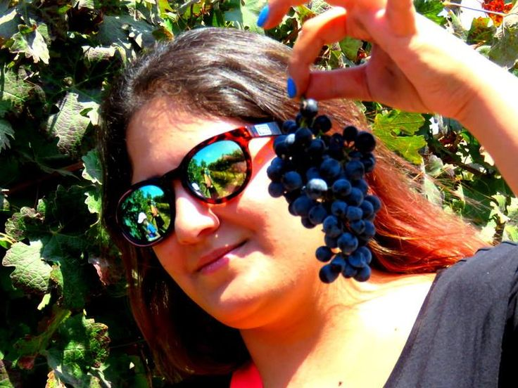 "Binyamina Winery. Израиль. ФБ ""Galina Malamant""."