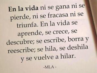 Sin duda, una increíble reflexión ... Por Ana Cecilia Blum  (Poeta y ensayista ecuatoriana).