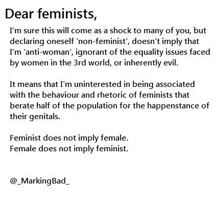 I'm not interested in the Feminazi bullying, thank you very much.