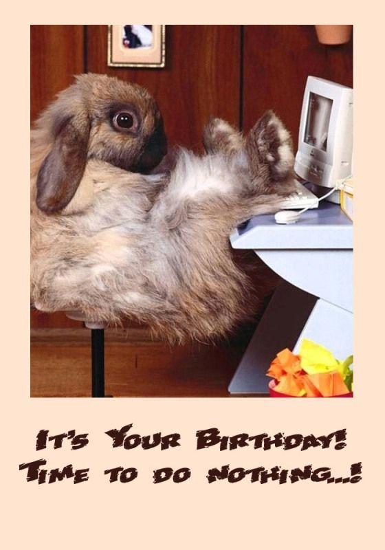 Funny bday card