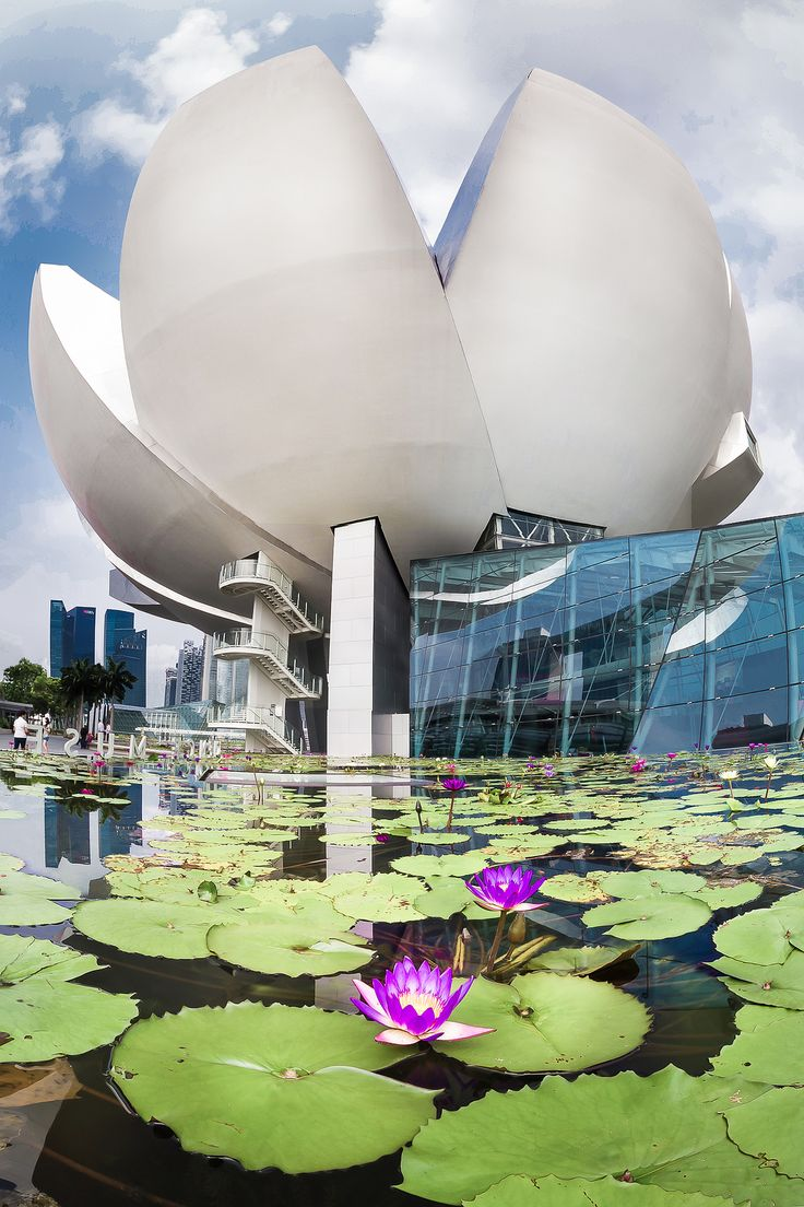 Lotus in Singapore.  This was not built when I lived there.