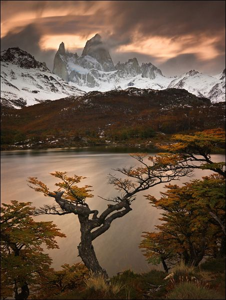 Chile. Autumn in Torres del Paine, Patagonia - Explore the World with Travel Nerd Nici, one Country at a Time. http://TravelNerdNici.com