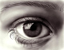Look away from the monitor at regular intervals – re-focus on distant or close objects to exercise the muscles in the eye.