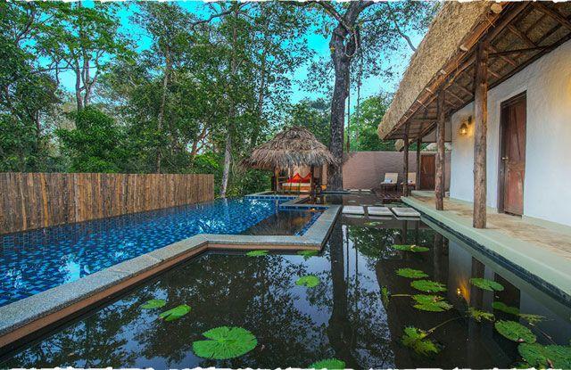 20 Best Sanjeevini Homestay In Karnataka India Images On Pinterest Goa India India And Indian