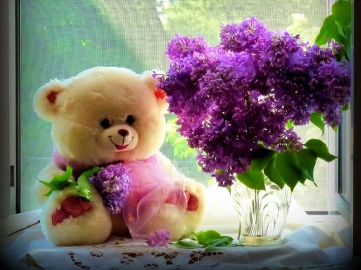 Cute Teddy Bear Images - AHDzBooK WP E-Journal