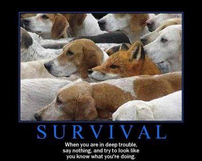 Survival Demotivational Poster