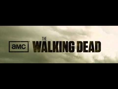 """Lee DeWyze """"Blackbird Song"""". Another fantastic song from Walking Dead. I think it's the mix of a bit of country/folk (not the twangy happy stuff), acoustic instrumentals and melancholy melodies that make these songs so good."""