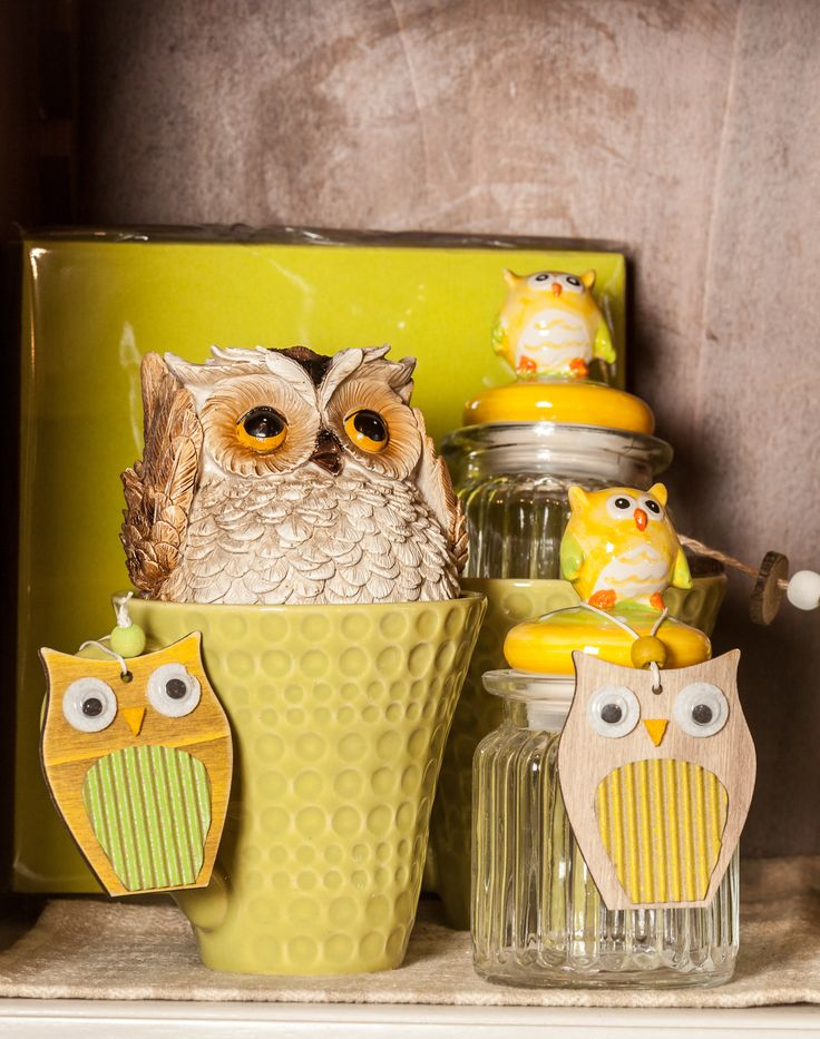 The wise owl - Owl collection available NOW