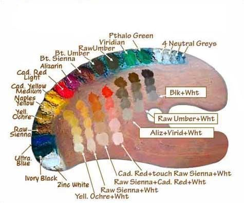 Helpful chart for mixing skin tone colors - oil paint