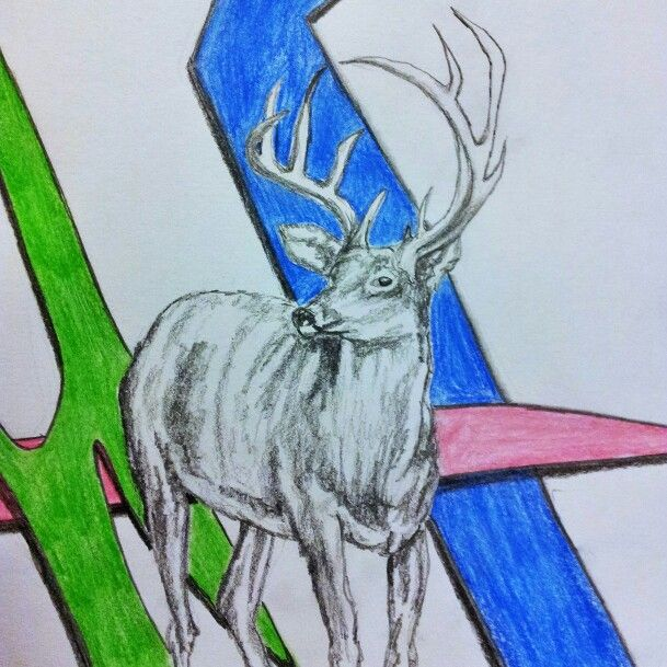 Deer sketch. Art ideas