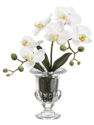 Premade Silk Orchid Arrangement in White