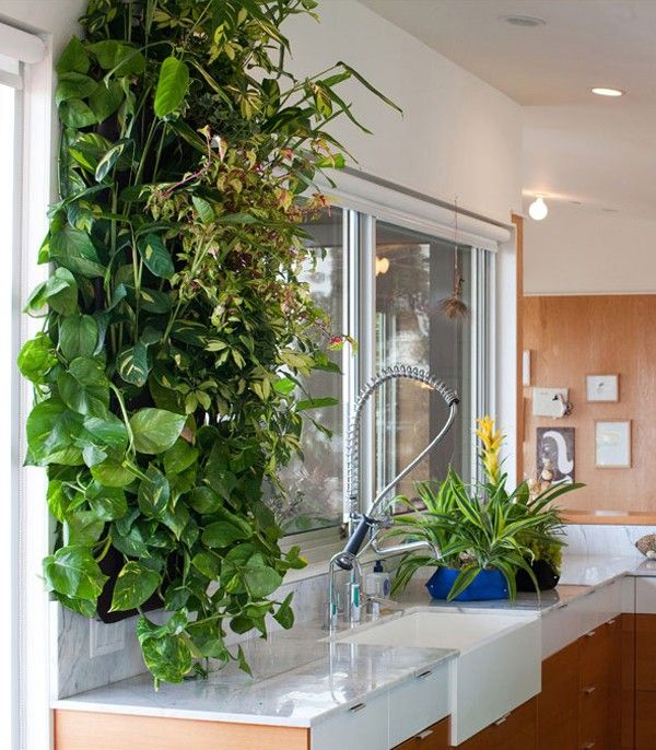 Scouted Living Wall Planters Indoor Plants Pinterest