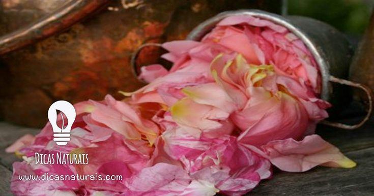 como-fazer-agua-de-rosas