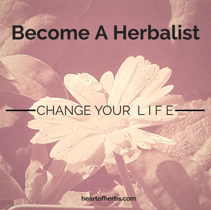how to become an herbalist in ohio