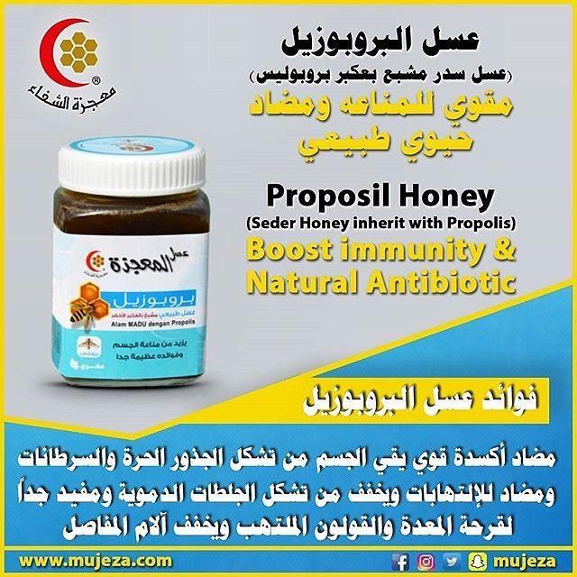 عسل البروبوزيل هو عسل طبيعي مشبع بالعكبر الأخضر صمغ النحل فوائده انه مقوي للمناعه ومضاد حيوي طبيعية ومضاد أكسدة قوي Immune Boosting Natural Antibiotics Honey