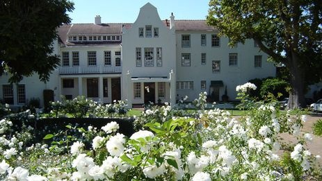 White flowers in the garden at the five star Cellars-Hohenhort Hotel & Spa.  http://www.south-african-hotels.com/hotels/cellars-hohenort-hotel-and-spa/