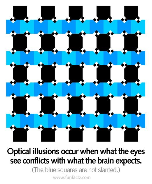 Image detail for -Optical illusions occur when what the eyes see conflicts with what the ...