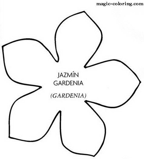 MAGIC-COLORING | Gardenia flower template
