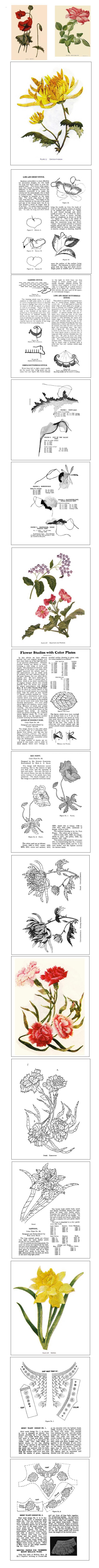 CD ROM Titled: Silk Embroidery.  Clear easy to understand instructions from an old 1902 publication on how to hand embroider beautiful life-like floral designs using silk thread. Click the image to go to our ebay listing.