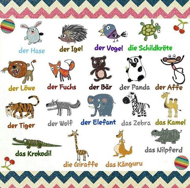 Deutsch Tier Learn german, German language learning
