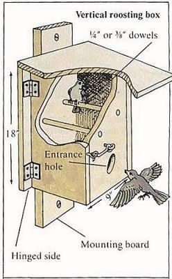 Nighttime Shelter for Winter Birds - Bird Roost Plan Two