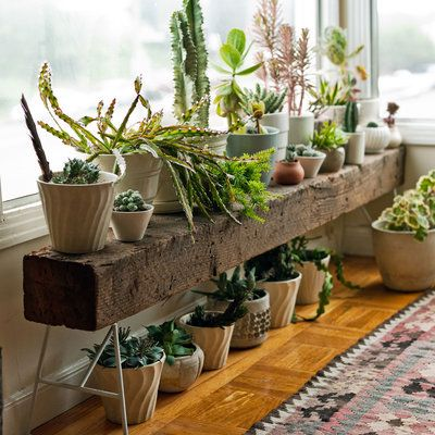 Create a second tier of containers by positioning pots atop and below a bench.