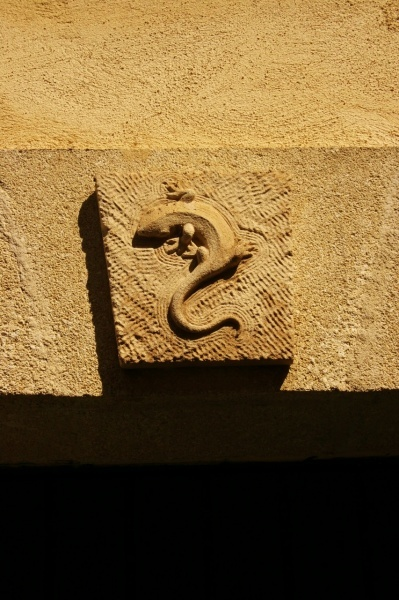A gecko above a door in Marsillargues. This animal has been following me around everywhere. I consider it a mascotte for my journey.