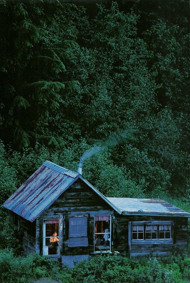 Cabin on Porcupine Creek, Alaska.